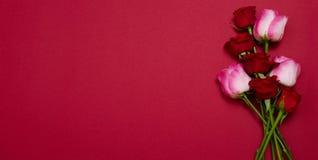 Розы на красной изолированной предпосылке Взгляд сверху и насмешка вверх Мать и день Валентайн Праздники женщин Обои и романтична стоковая фотография rf