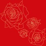 Розы на красной предпосылке Стоковое Изображение