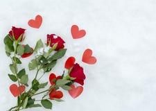 Розы на снежке Стоковое Изображение