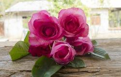 Розы на старой деревянной доске, предпосылке дня валентинок, wedding da Стоковое Фото