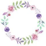 Розы пинка лист гирлянды Розы пурпура венка цветка акварели Стоковое фото RF
