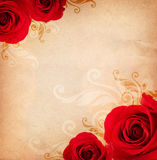 розы предпосылки Стоковая Фотография