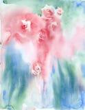 Розы предпосылки акварели иллюстрация штока
