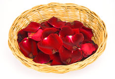 розы предпосылки красные белые Стоковые Изображения RF