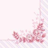 розы приветствию карточки Стоковые Изображения