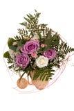 розы пука Стоковая Фотография RF
