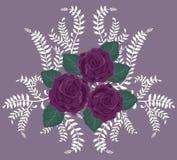 розы пурпура предпосылки Стоковая Фотография