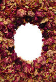 розы рамки Стоковое Фото
