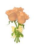 розы тесемки 3d связанные совместно Стоковые Изображения RF