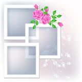 розы фото рамки иллюстрация штока