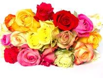 розы цветка красивейшего букета цветастые Стоковые Фото
