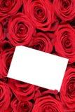 Розы цветут на день валентинки или матерей с пустым приветствием Стоковое Изображение RF