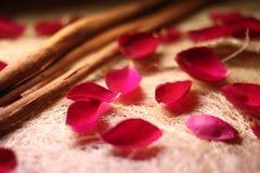 розы циннамона Стоковое Изображение