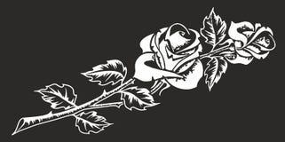 Розы 2 части бесплатная иллюстрация