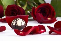 розы шоколада Стоковое Изображение RF