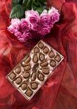 розы шоколада Стоковая Фотография RF