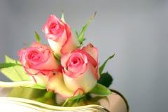 розы шоколадов стоковое изображение