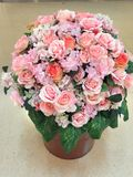 Розы для ваших любимых стоковое изображение rf