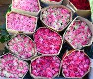 Розы для сбывания Стоковые Фотографии RF