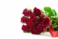 Розы Стоковое Изображение RF