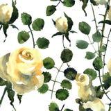 розы бесплатная иллюстрация