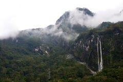 Рокируйте маяк пункта, северный остров, Новую Зеландию стоковые изображения rf