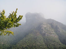 Рокируйте утес над садами Kirstenbosch походя огромная лягушка стоковое фото rf