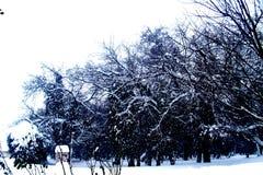 Рокируйте erski ` DunÄ, Сербию, зиму, перемещение, Kulpin Стоковая Фотография