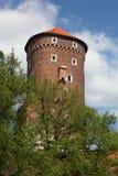 рокируйте wawel krakow средневековое мемориальное Польши истории Стоковое Изображение RF