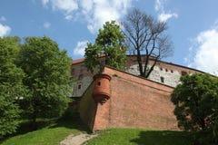 рокируйте wawel krakow средневековое мемориальное Польши истории Стоковое Фото