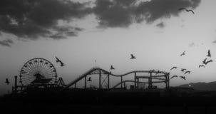 ролик каботажного судна птиц стоковое фото rf