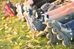 ролик ног травы стоковое изображение rf