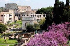 Романо Foro (римский форум) и Colosseum, Рим, Италия Стоковые Фотографии RF