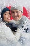 Романс зимы стоковое изображение