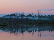 Романтичная атмосфера берег в помохе на горизонте пинка захода солнца Стоковые Изображения
