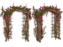 Романтичная беседка с розовыми розами Стоковая Фотография