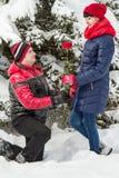 Романтичная встреча в древесинах Стоковая Фотография RF
