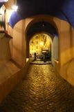 Романтичная вымощенная улица Стоковое Изображение RF
