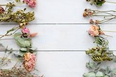 Романтичная высушенная предпосылка белизны состава цветка Стоковые Изображения RF