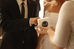 Романтичная влюбленность 16 символов свадьбы пар замужества Стоковые Изображения