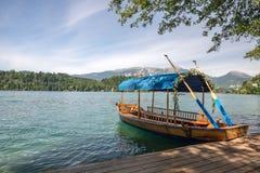 Романтичная гребля на озере Стоковое Фото