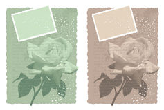Романтичная карточка с подняла Стоковая Фотография RF