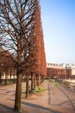 Романтичная осень в Париже стоковые фотографии rf