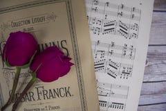 Романтичная память Стоковое Изображение RF