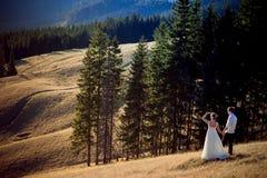 Романтичная пара свадьбы наслаждается ландшафтом горы Стоковая Фотография