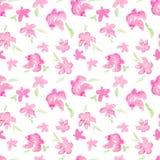 Романтичная розовая флористическая безшовная картина - цветки акварели хрупкие Стоковая Фотография