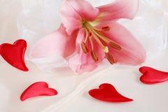романтичное Валентайн Стоковое фото RF