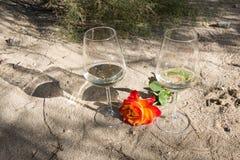 Романтичное время с вином и розовым цветком Стоковое фото RF