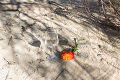 Романтичное время с вином и розовым цветком Стоковая Фотография