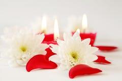 романтичное нежое Валентайн Стоковые Изображения RF